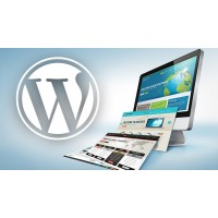 Complete eCommerce Website with 1 Year Web Hosting (WordPress)